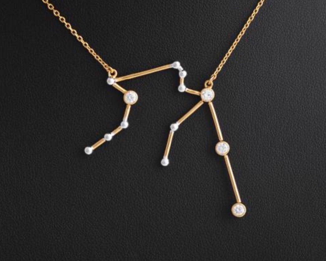 [AQUARIUS:Jan.21-Feb.19] Nilin Zodiac Necklace