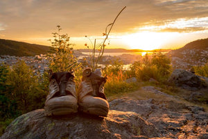 Hiking Essentials You Need Before Hitting the Trail