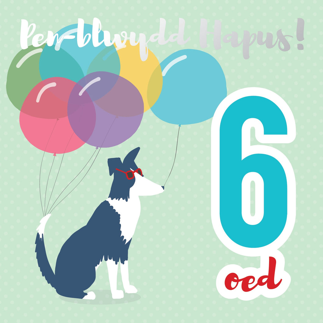 Pen-blwydd Hapus 6 (Happy birthday 6 - Dog) Card