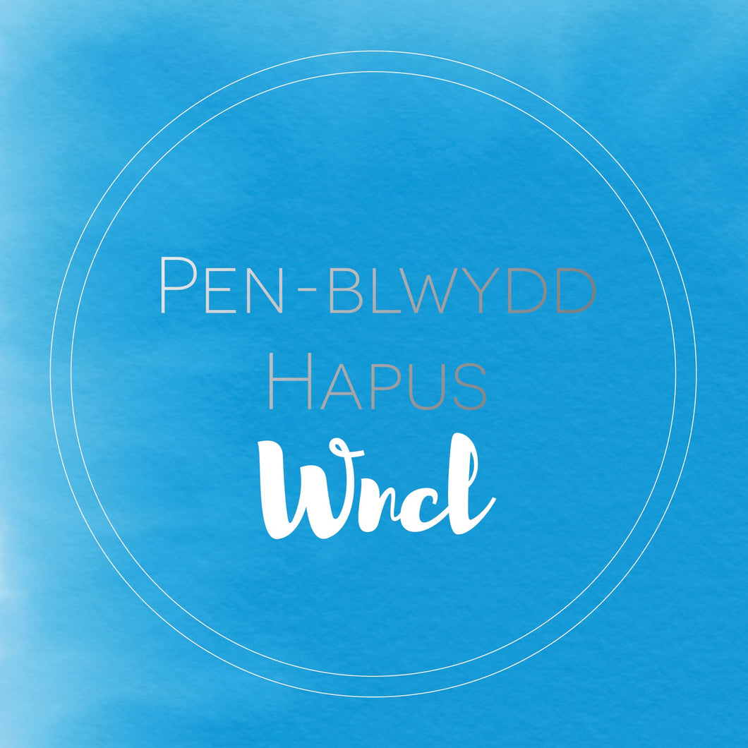 Pen-blwydd hapus Wncl (Happy birthday Uncle) card