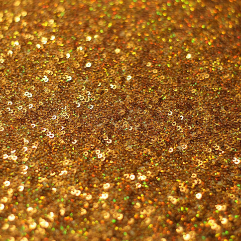 Glamour Sequin Shiny | For Dancewear, Costumes, Gowns, Dresses | 80% Nylon, 20% Spandex - Rex Fabrics L.A.