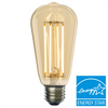LED Edison Bulb ENERGY STAR