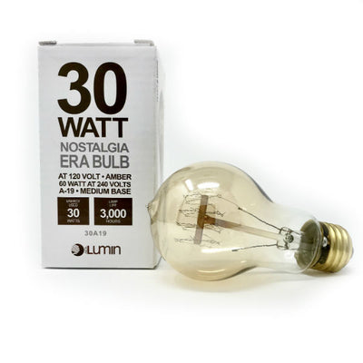 Quad Loop Edison 30 Watt Light Bulb