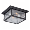 Textured Black 2 Edison Lights Outdoor Flush Mounted Fixture