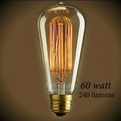 Edison 60 Watt Vintage Antique Light Bulb - 5.5 in. Length - Clear