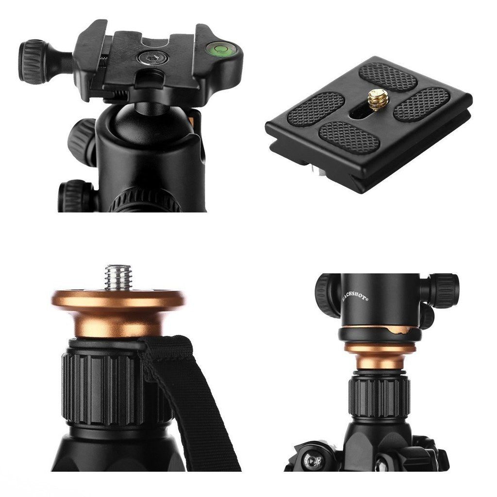 PROFLEX TRIPOD WITH 360° FLUID BALL HEAD MOUNT