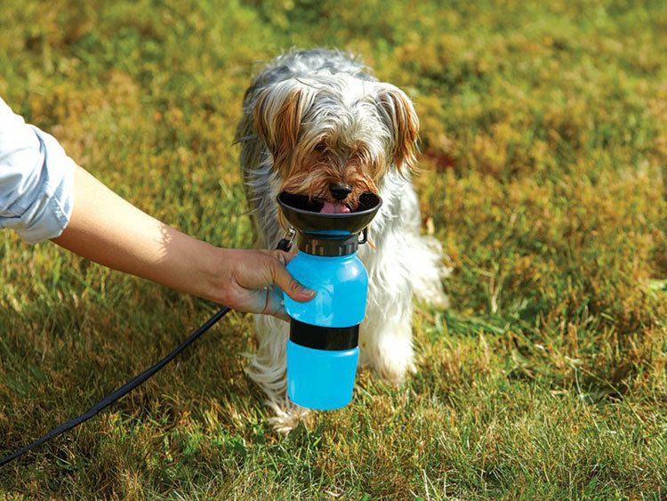 DogBottle - Drinking Dispenser