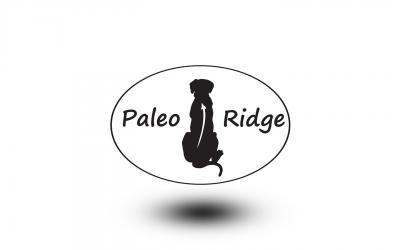 Paleo Ridge raw dog food. Lamb tripe with duck complete