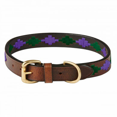 Weatherbeeta Polo Dog Collar
