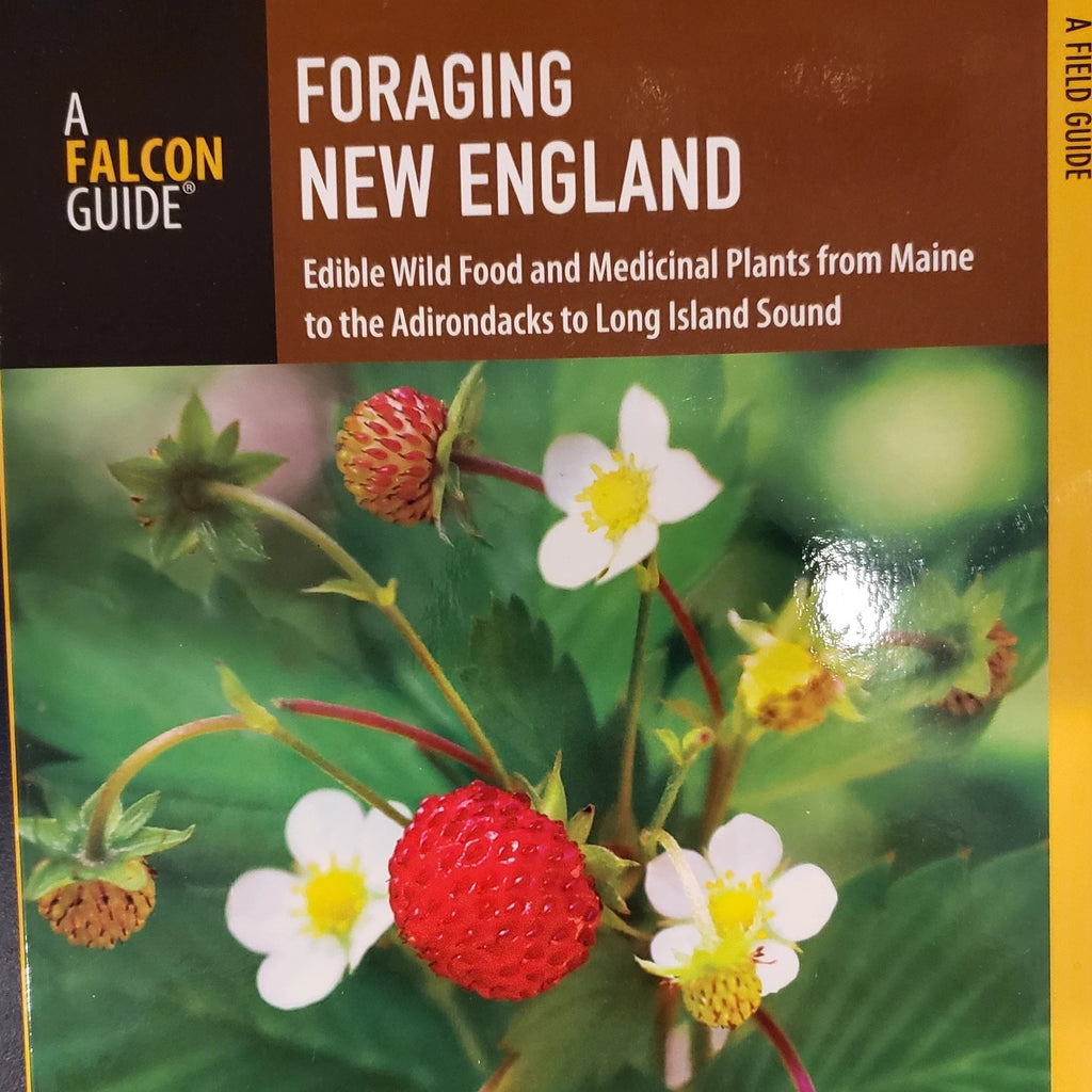 Foraging New England - A Falcon Guide by Tom Seymour