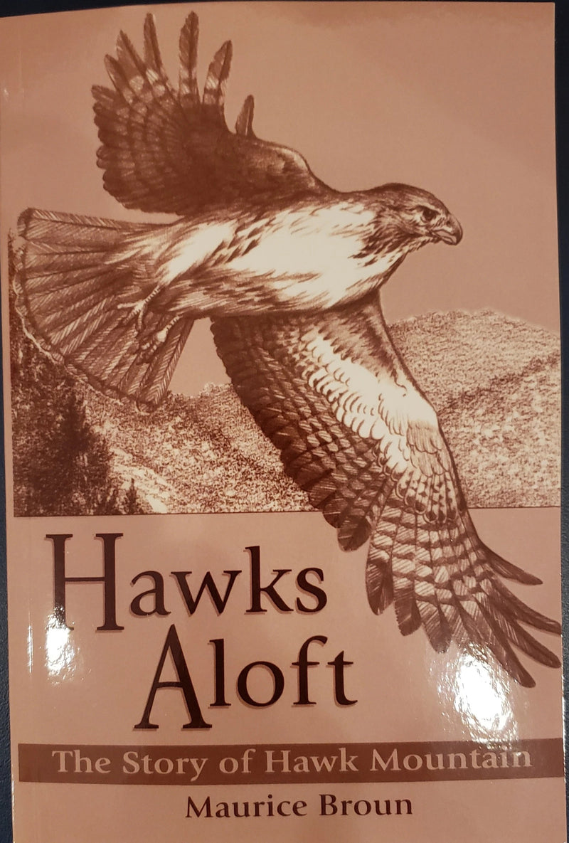 Hawks Aloft by Maurice Broun