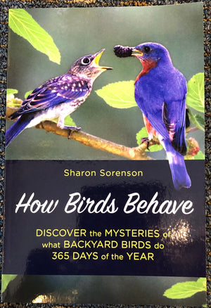 How Birds Behave by Sharon Sorenson