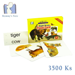 Flash Card - Animals Flash Cards