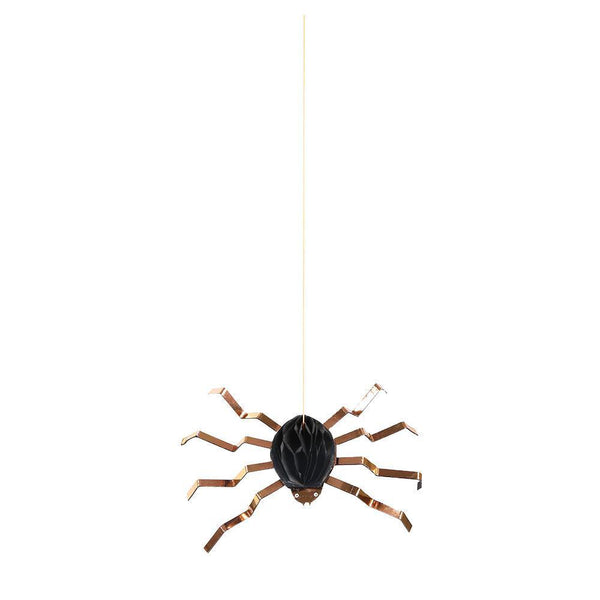 hanging spiders