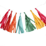 colorful fiesta party tassels