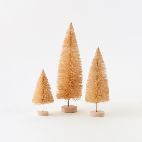 Neutral Sisal Trees
