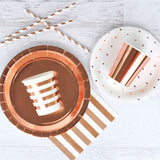 Rose Gold Paper Plates with Cute cups, napkins and straws
