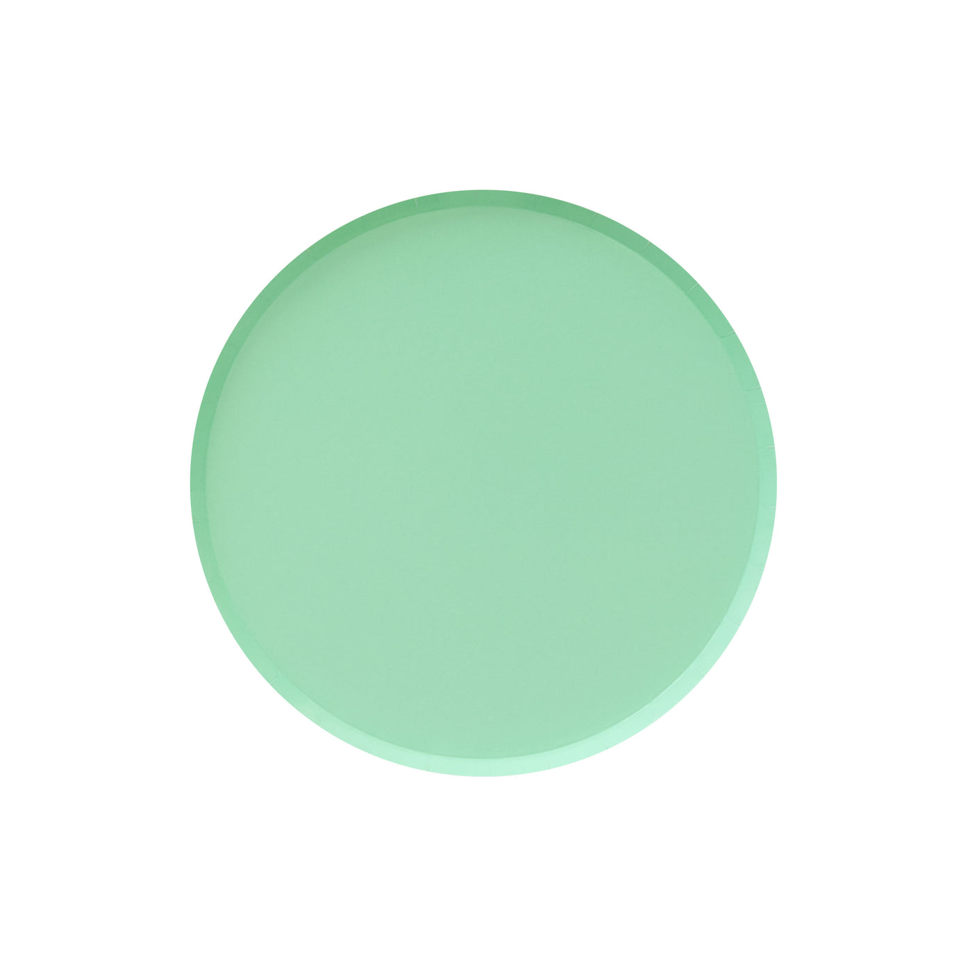 Mint Green Party Plates - Witty Bash