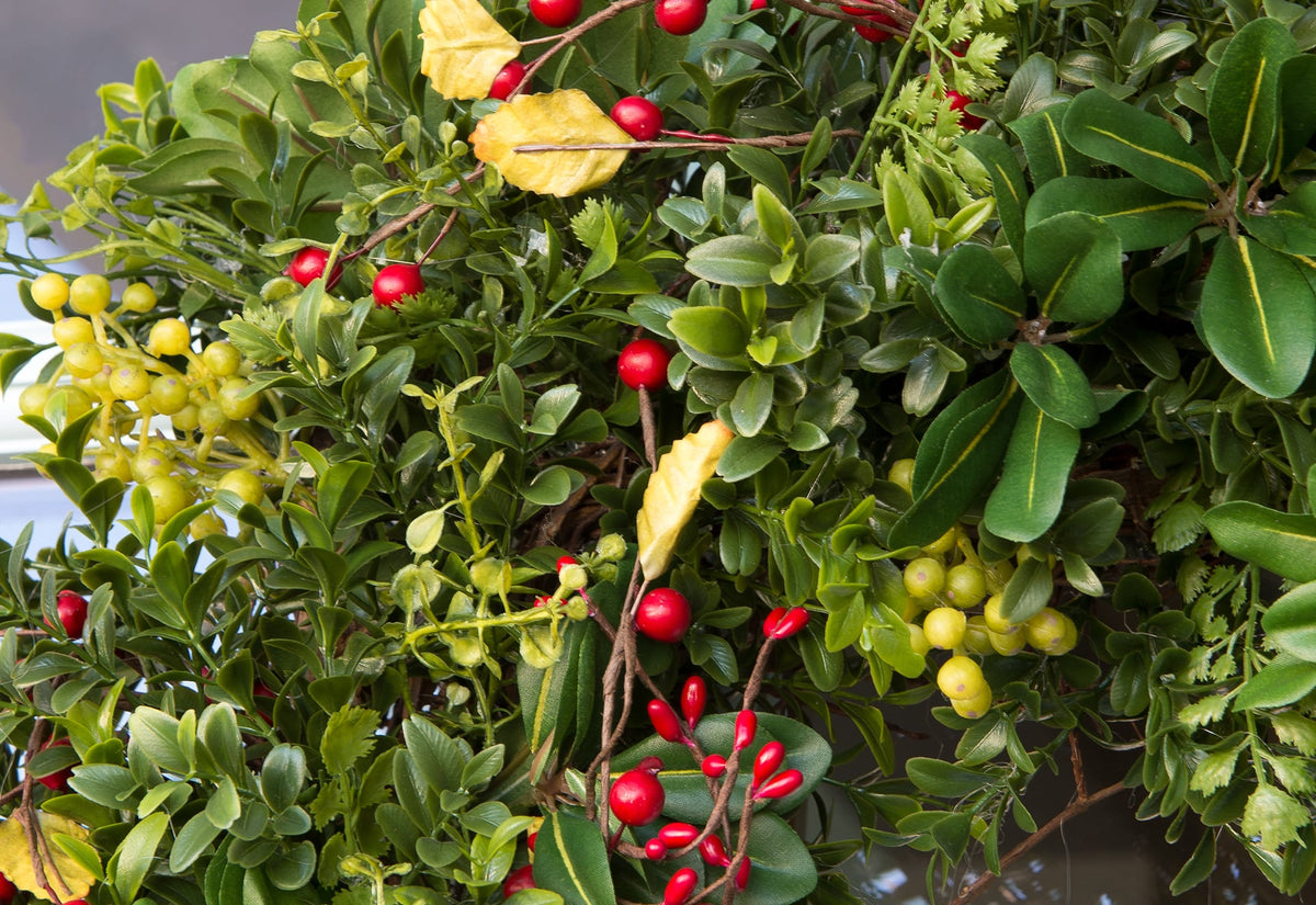 Christmas Boxwood & Berry Wreath - 30
