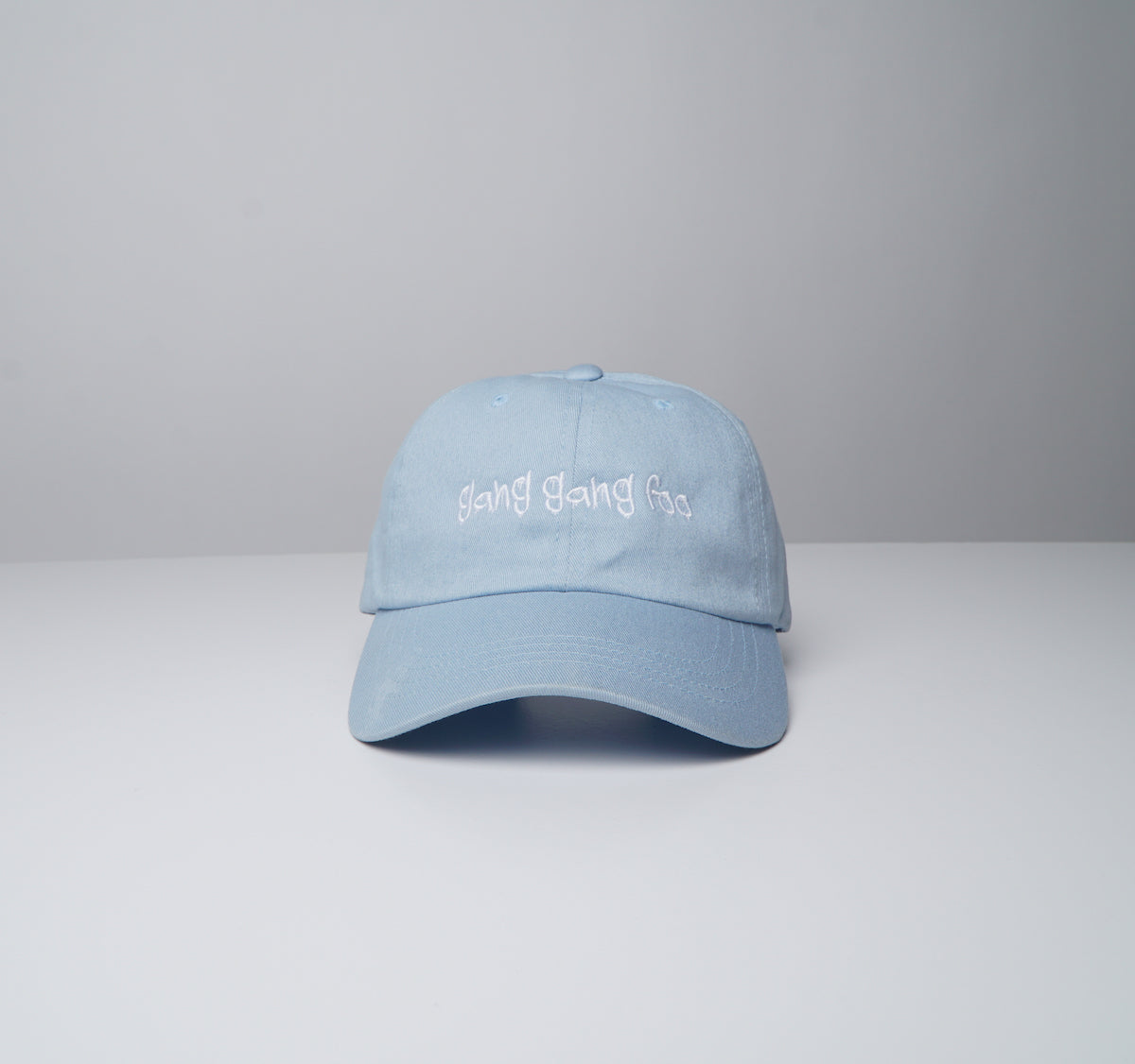 GGF Disc Dad Hat