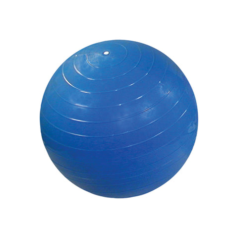 CanDo® Inflatable Exercise Ball - Blue - 42 inch
