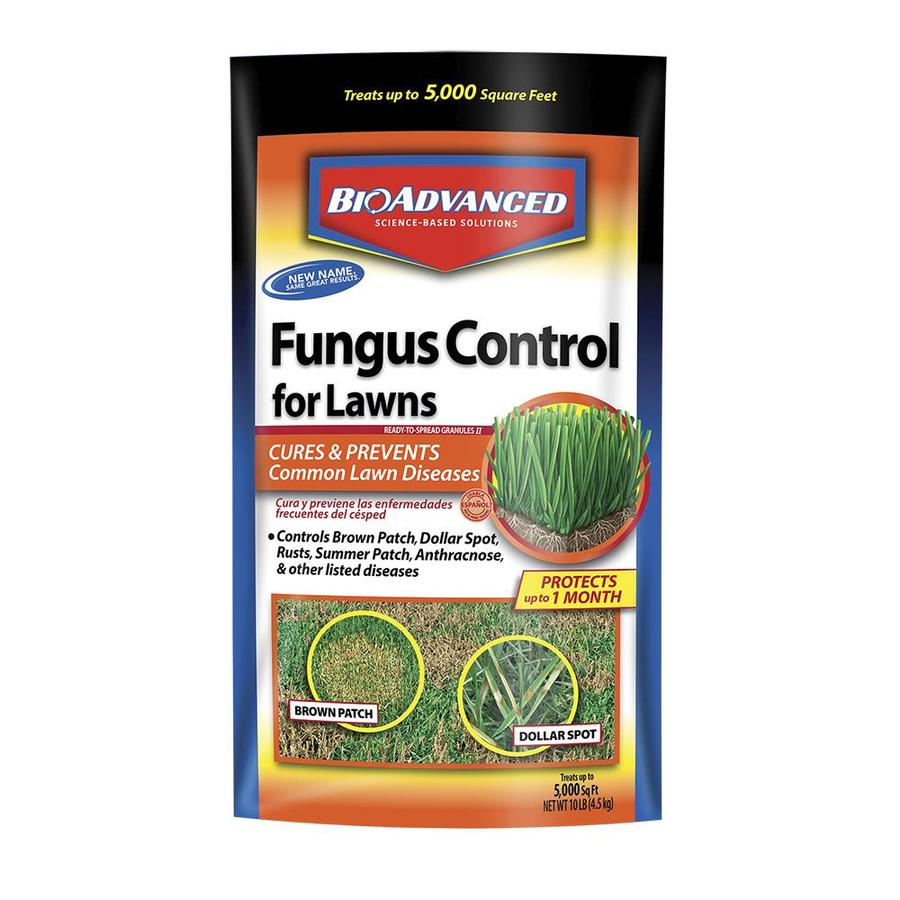 Lawn Fungus Control - Bayer Advance