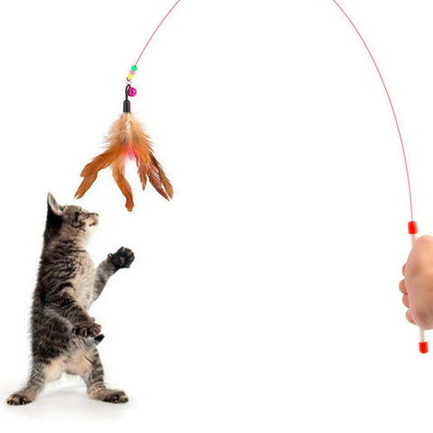 cat toy Cute Design Steel Wire Feather Teaser Wand Plastic - Tooty Store