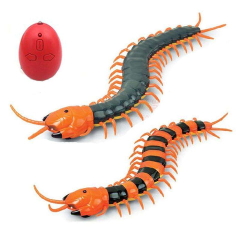 Electric Centipede Cat Teaser Toy with Remote - Tooty Store