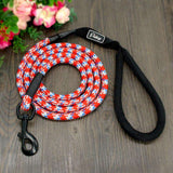 New Nylon dog leashes - Tooty Store