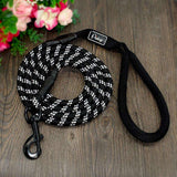 New Nylon dog leashes