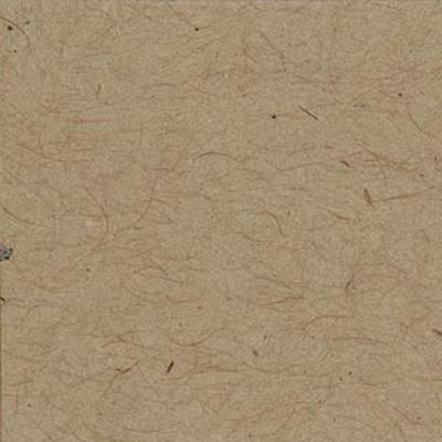 Bazzill  - 12x12 Smooth Cardstock - Kraft