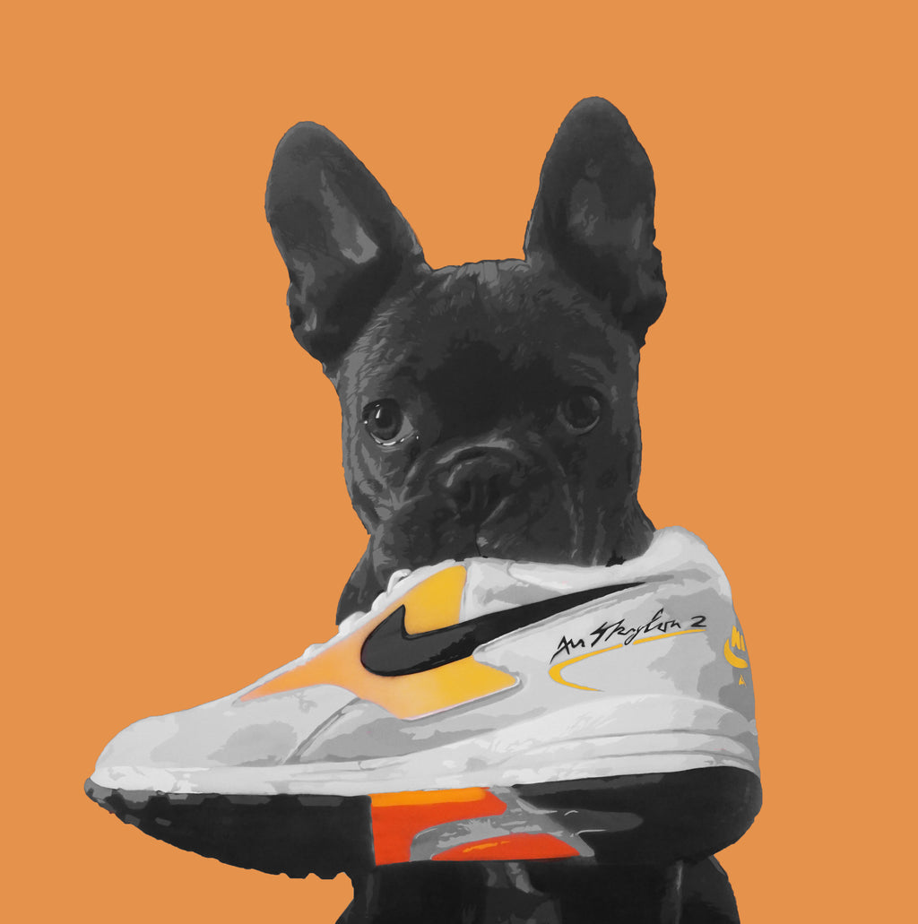 Skylon Pup (Orange)