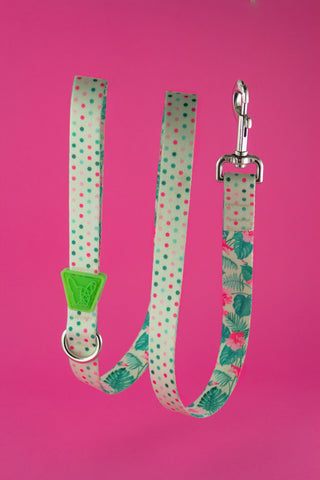 Dots Leash by Pawllar