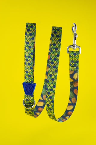 Honeycomb Leash by Pawllar