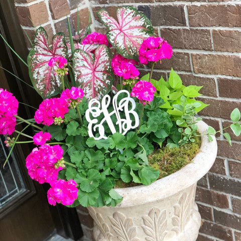 Acrylic Monogram Plant Stakes-3 Initial