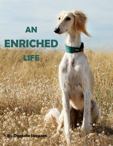 An Enriched Life - eBook
