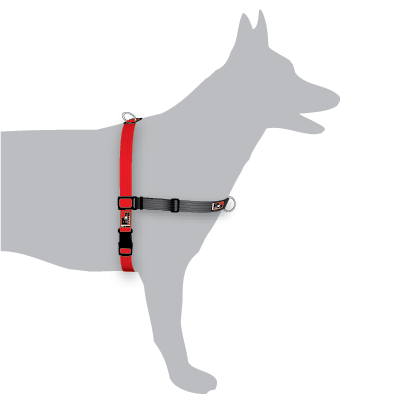 BlackDog Balance Harness - Medium