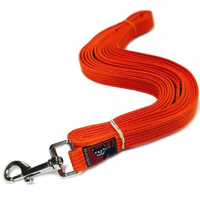 Blackdog Long Lead (5m) - Regular