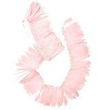 Pastel Pink Feather Garland
