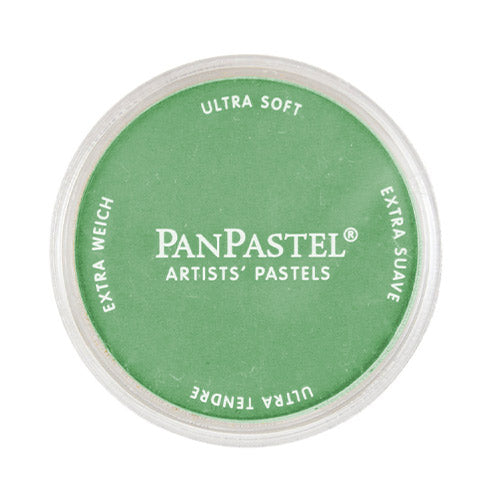 Panpastel Soft Pastel 26405 Permanent Green