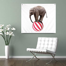 Elephant Balancing On A Ball Décor Tapestry