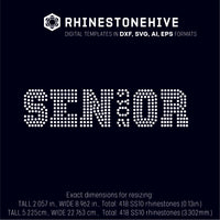 SENIOR 2019 rhinestone template digital download, ai, svg, eps, png, dxf - rhinestone templates