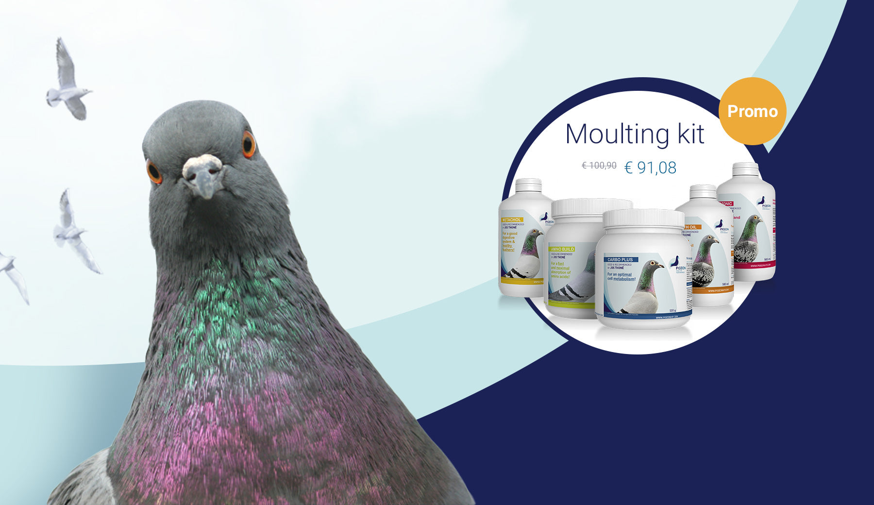 Prepare for moulting season