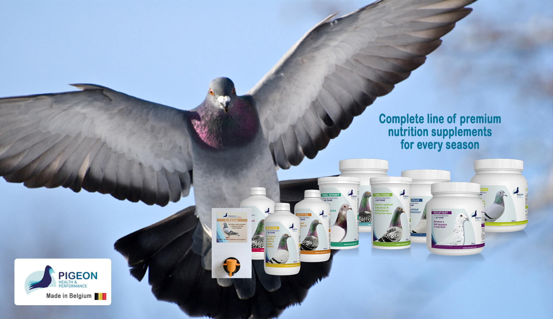 Healthy pigeons and top performance, all year round!