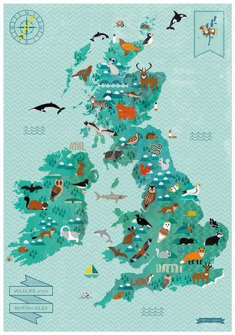 A2 Wildlife of British Isles