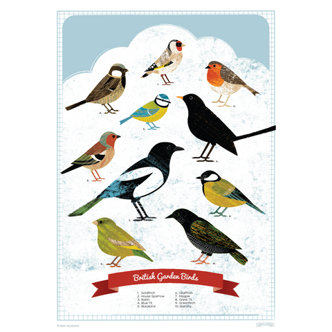 British Birds by Finch & Robin