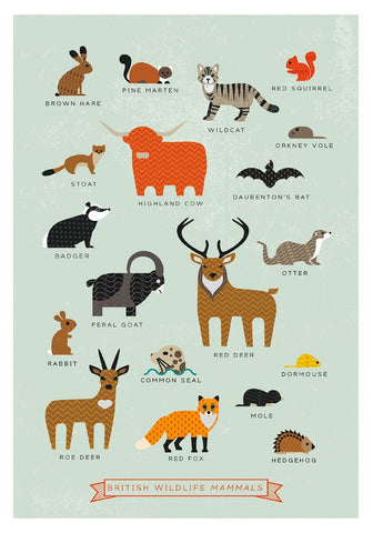 British Mammals Postcards