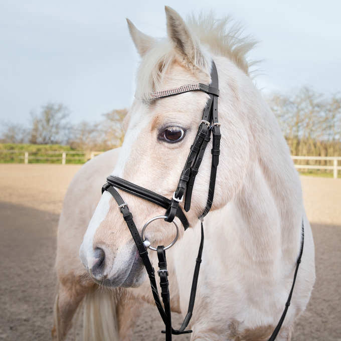 Horze Pony Bridle - Horse & Hound Tack Shop & Pet Supply