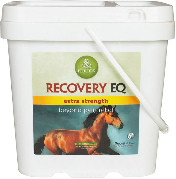 Recovery EQ Extra Strength - Horse & Hound Tack Shop & Pet Supply