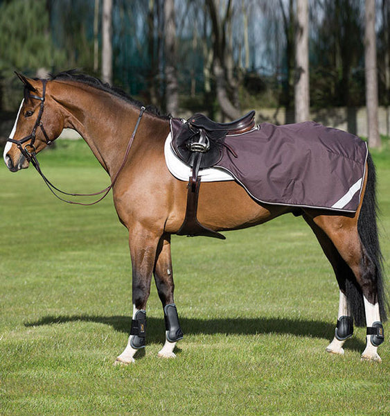 Amigo® Competition Sheet - Horse & Hound Tack Shop & Pet Supply
